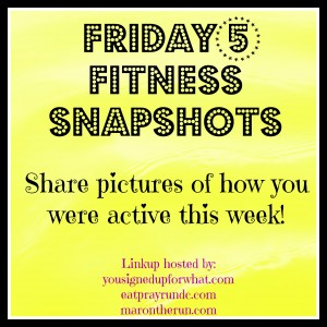 Friday 5 Fitness Snapshots