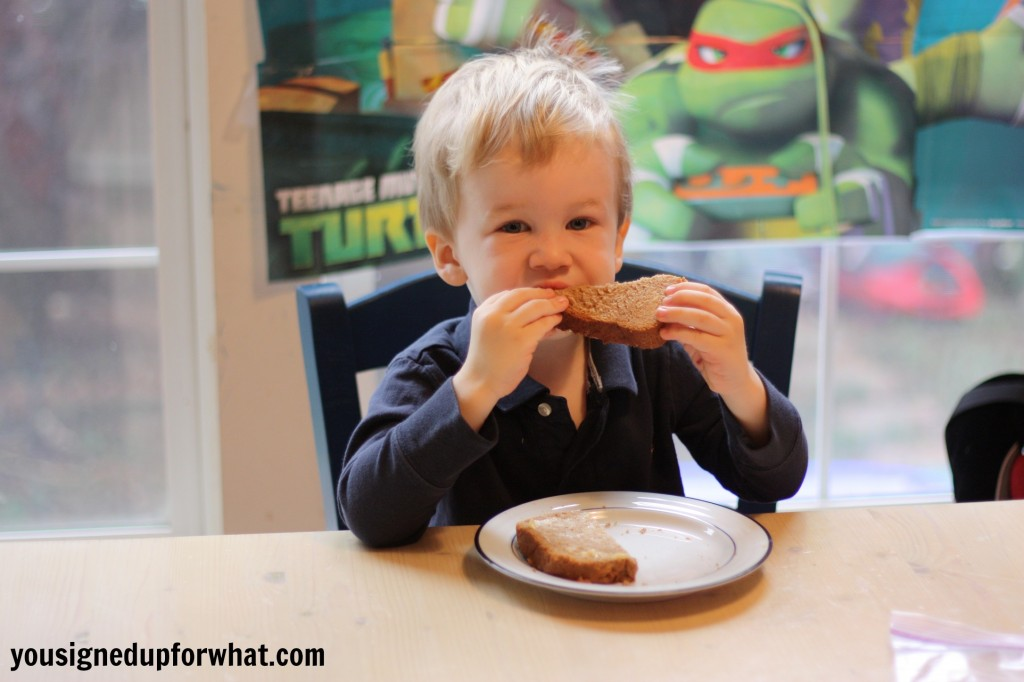 Toddler eating bread
